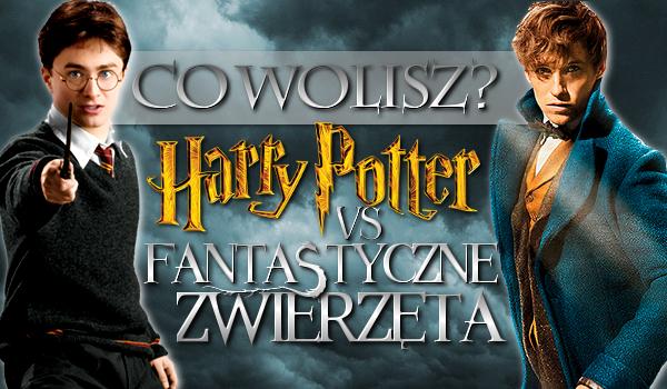"""""""Harry Potter"""" i """"Fantastyczne Zwierzęta"""" – co wolisz?"""