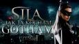 Sila - Jak ja kocham Gotham! #1