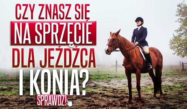 Czy znasz się na sprzęcie dla jeźdźca i konia?