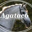 Agatac6