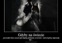 cytaty o koniach Co wolisz? Cytaty o koniach cytaty o koniach