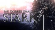 Jak dobrze znasz ród Stark?