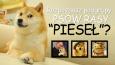 Czy rozpoznasz podgrupy psów rasy Pieseł (Shiba inu)?