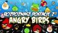 """Czy rozpoznasz postacie z """"Angry Birds''?"""