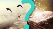 """29 trudnych pytania z serii """"Co wolisz?"""""""