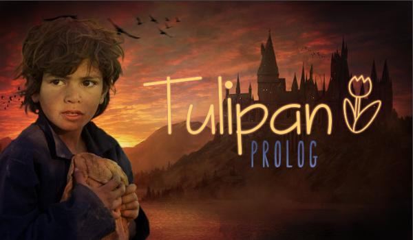 Tulipan - Prolog