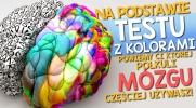 Na podstawie testu z kolorami powiemy Ci, której półkuli mózgu częściej używasz!