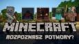 Jak dobrze znasz potwory z Minecrafta?