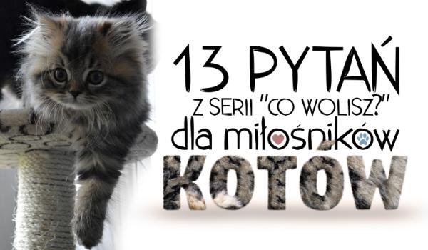 """13 pytań z serii """"Co wolisz?"""" na temat kotów!"""