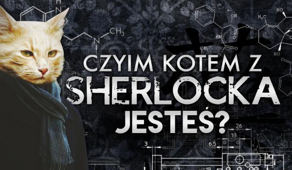 """Czyim kotem z """"Sherlocka"""" jesteś?"""