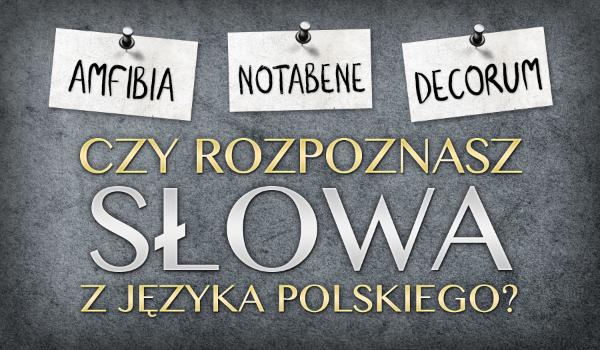 Czy rozpoznasz słowa z języka polskiego?