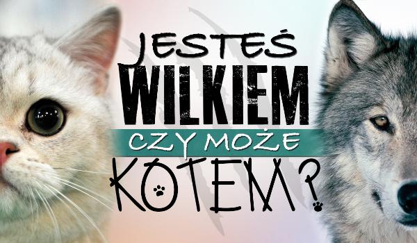 Jesteś wilkiem czy kotem?