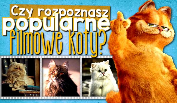 Czy rozpoznasz popularne filmowe koty?