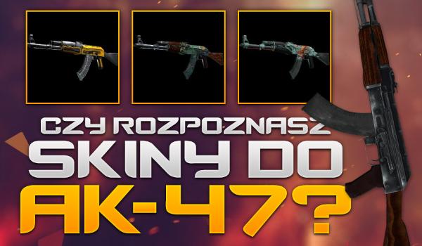Czy rozpoznasz wszystkie skiny do AK-47 z gry CS:GO?