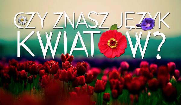 Czy znasz język kwiatów?