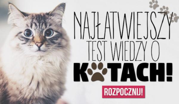 Najłatwiejszy test o kotach!
