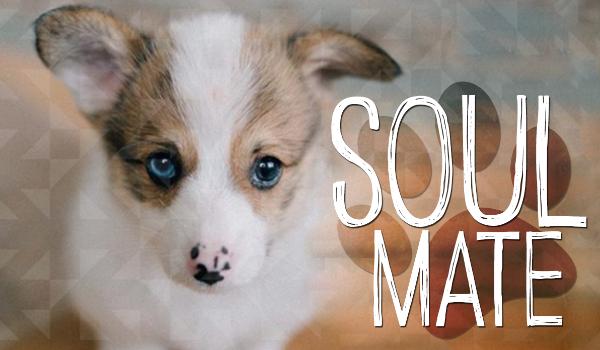 Soul mate #1