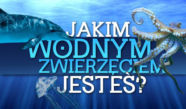 Jakim wodnym zwierzęciem jesteś?