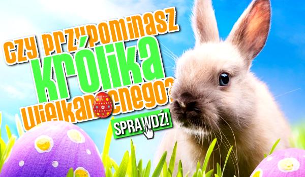 Czy przypominasz Królika Wielkanocnego?