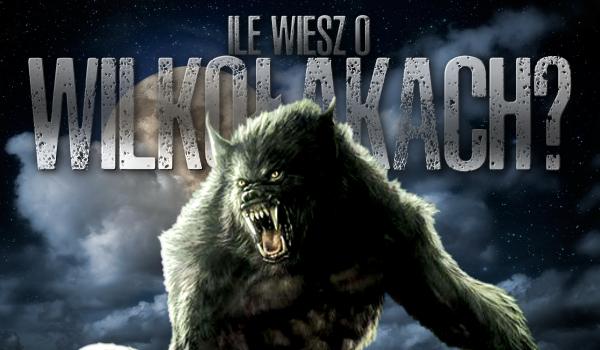 Ile wiesz o… wilkołakach?