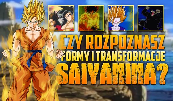 Czy rozpoznasz formy i transformacje Saiyanina?