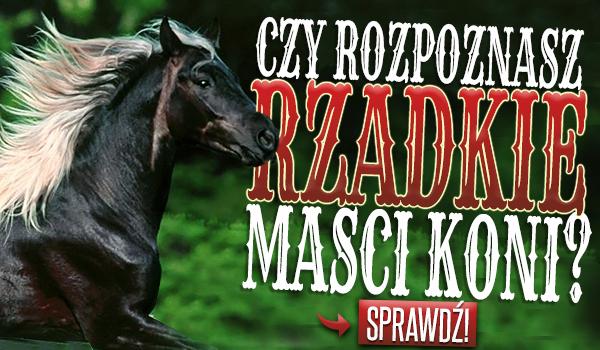 Czy rozpoznasz RZADKIE maści koni?