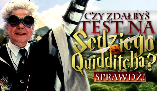Czy zdołałbyś zdać test na sędziego Quidditcha?
