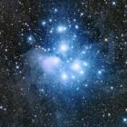 Starllet