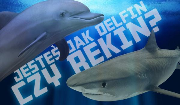 Jesteś jak rekin czy delfin?