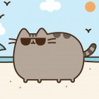 Pusheen_summer