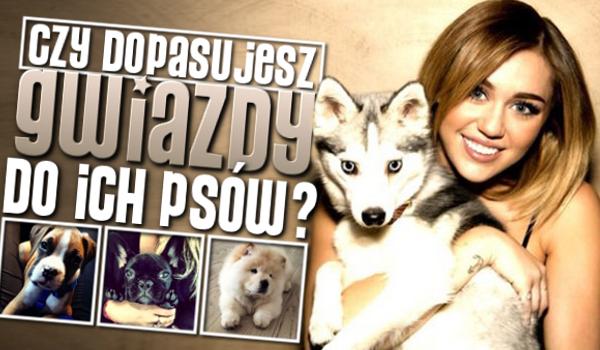 Czy dopasujesz gwiazdy do ich psów?