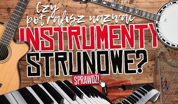Czy potrafisz nazwać instrumenty strunowe?