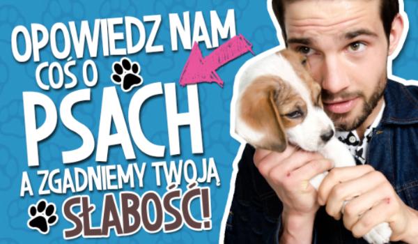 Opowiedz nam coś o psach, a my odgadniemy Twoją największą słabość!