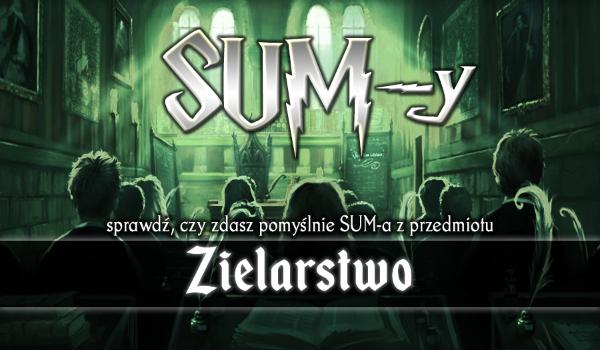 SUM-y #2 – Zielarstwo!