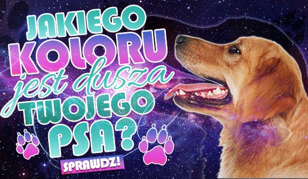 Jakiego koloru jest dusza Twojego psa?