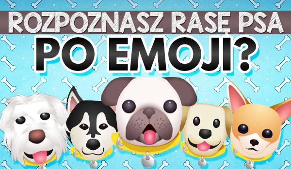 Czy zgadniesz jaka to rasa psa po emoji?