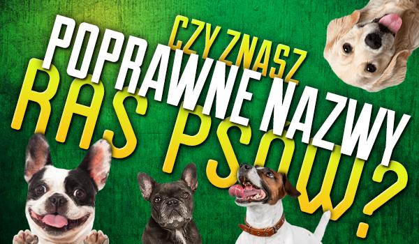 Czy znasz poprawne nazwy ras psów?