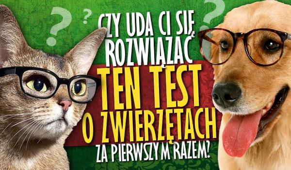 Czy uda Ci się rozwiązać ten test o zwierzętach za pierwszym razem?