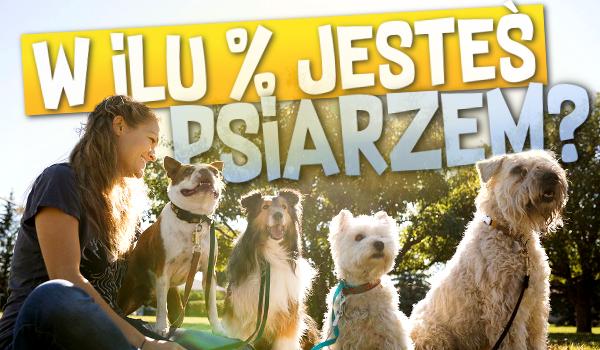 W ilu % jesteś psiarzem?
