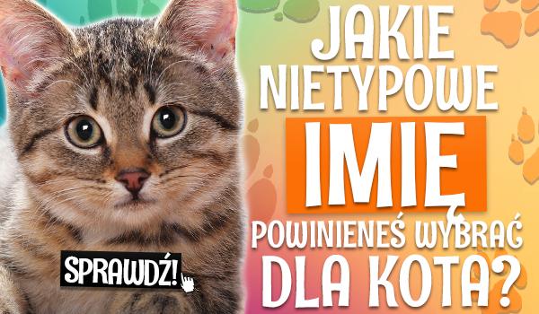 Jakie nietypowe imię powinieneś wybrać dla kota?