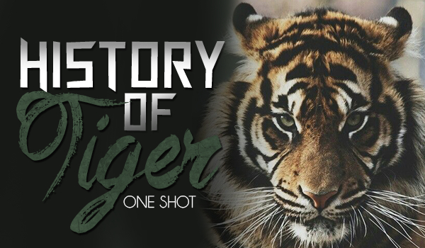 History of tiger – ONE SHOT