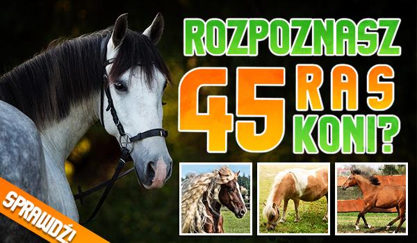 Czy rozpoznasz 45 ras koni?