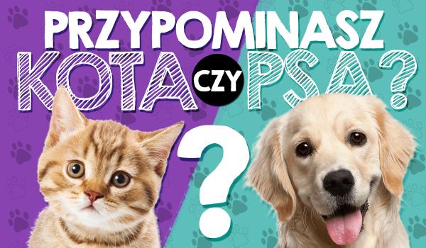 Przypominasz psa czy kota?