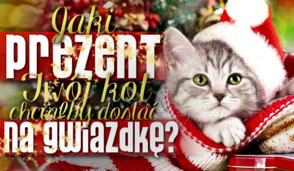 Jaki prezent Twój kot chciałby dostać od Ciebie na Gwiazdkę?