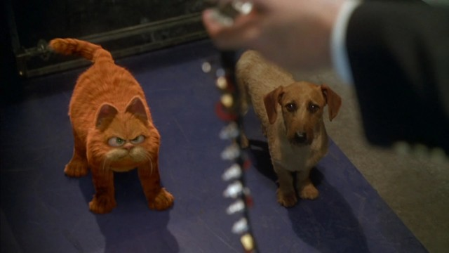 Ile Wiesz O Filmie Garfield