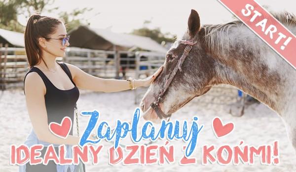 Zaplanuj idealny dzień z końmi!