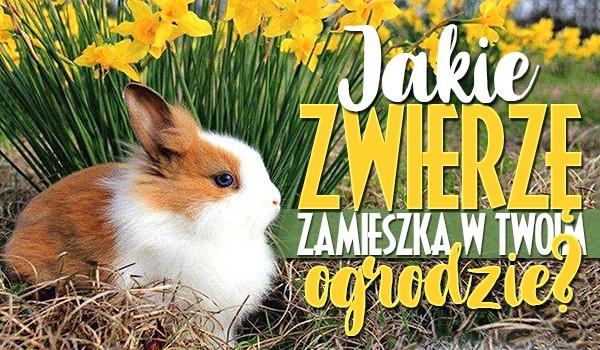 Jakie zwierzę zamieszka w Twoim ogrodzie tej wiosny?