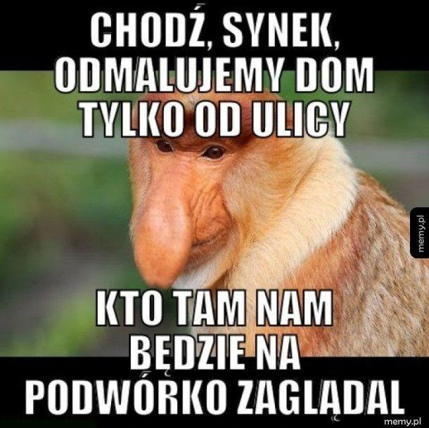 Suchary I Memy12 Janusz