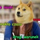 Kolorowy_Swiat