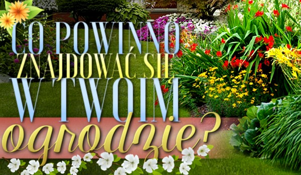 Co powinno znajdować się w Twoim ogrodzie?